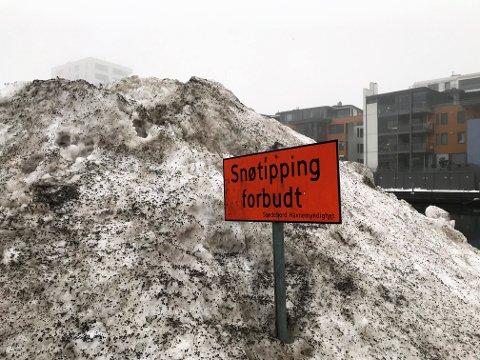 ULOVLIG: Brøytemannskaper har tippet snø her ved Kilen Brygge. Det er ikke greit.