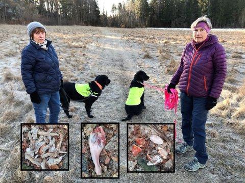MATAVFALL: Liv S. Madsen (til venstre) og Anne Margrethe Bøe synes det er veldig uheldig at noen har lagt masse matrester i det populære friluftsområdet ved Hafallen på Østerøya.