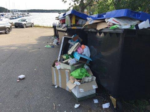 RENNER OVER: Dette synet møtte en av SBs journalister ved et besøk hos Engø båtforening tidligere i sommer.