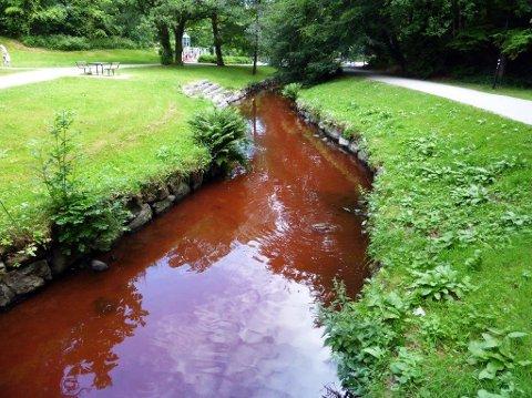 Den lave vannstanden gjør forurensing ekstra tydelig.