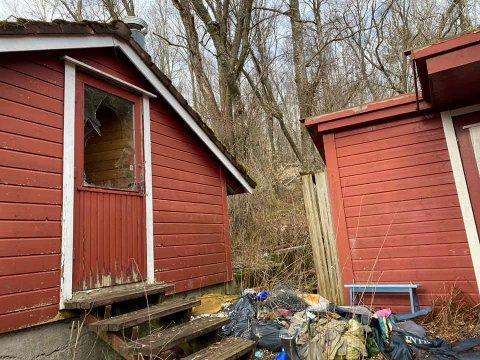 Hytten og eiendommen ved Bråsteinvannet bærer preg av manglende vedlikehold og rydding.