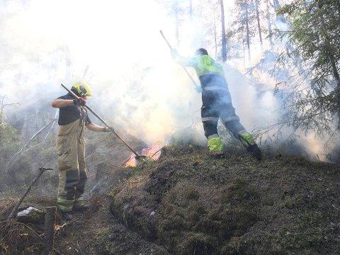 Brannmennene fra Sarpsborg brannvesen jobbet iherdig for å få slukket brannen.