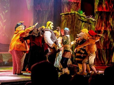Får tilskudd: Diorama sang, dans og drama ligger an til å få 185.000 kroner i kommunal støtte til tre store oppsettinger. Her fra premieren på «Shrek» på Sarpsborg scene i mars 2018.