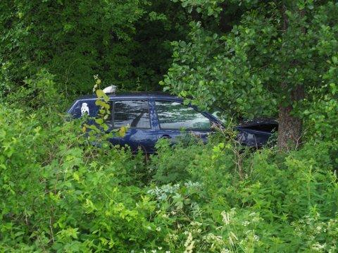 Inne blant trær og kratt sto bilen mandag morgen. Føreren hadde for lengst forduftet fra stedet.
