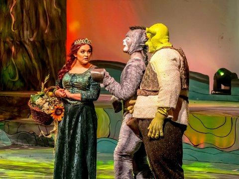 Nominerte: Diorama sang, dans og drama er nominerte til kulturprisen 2018. Her fra ungdomsteaterets oppsetting av «Shrek» i fjor, med blant andre Stian Ludvigsen som Shrek, Daniel W. Theodorsen som eselet, Jonas Gjestad Bergløv som Lord Farquaad. Nora Christine Karlsen, Beatrice Lystad Akselsen og Sarah Helene Gjestad delte på rollen som Fiona.