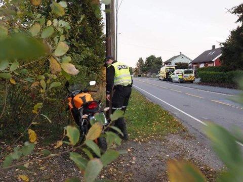 RÅDYR: En mopedist har kjørt på et rådyr i Nordbyveien tirsdag morgen.