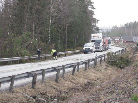 SPERRET TRAFIKKEN: To grantrær sperret mandag ettermiddag trafikken på riksvei 22 ved Hevingen.
