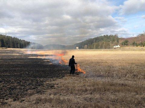 Brannen er på jordet akkurat ved utkjøring mot Løkkevika i Ingedalskrysset i  Skjeberg