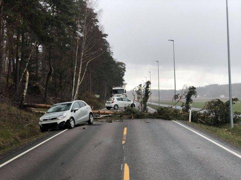En bil har kollidert i et tre på fylkesvei 118 i Skjeberg.