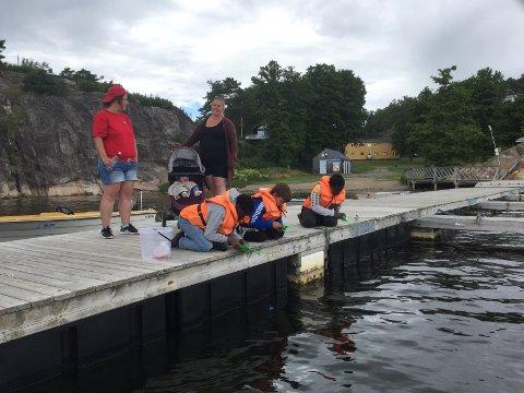 FISKER KRABBER: Det arrangeres mange aktiviteter på sommerleiren. Her fisker Karina Sarfo (fra venstre), Siw Hansen og barna Christian Bashizy, Markus Wright og Naomi Bashizy krabber.