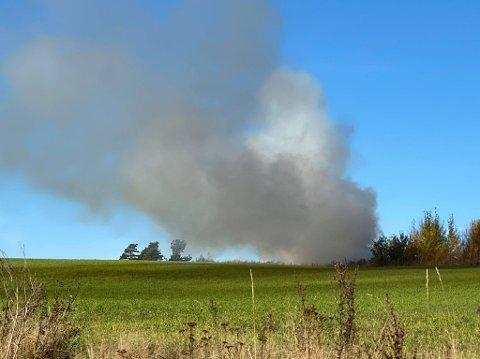 Mange har tipset Sarpsborg Arbeiderblad om mye røyk i Greåker-området tidlig søndag ettermiddag. Røyken skyldes et stort bål ved Lundestadveien i Kalnesskogen.
