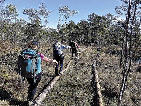 Tur-eldorado: Trømborgfjella er populært for turfolk. Nå skal regjeringen avgjøre om nye deler av området skal omfattes av frivillig vern.