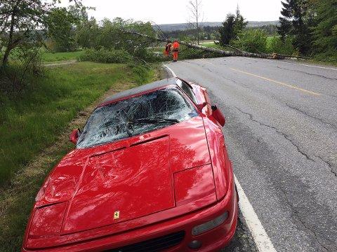KNUST: Slik så Ferrarien ut etter møtet med treet.