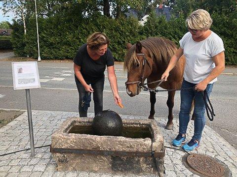 Torild Schie og Kari Molle Bråten prøver å få Linus til drikke av vanningstroet, ikke bare lukte på det.