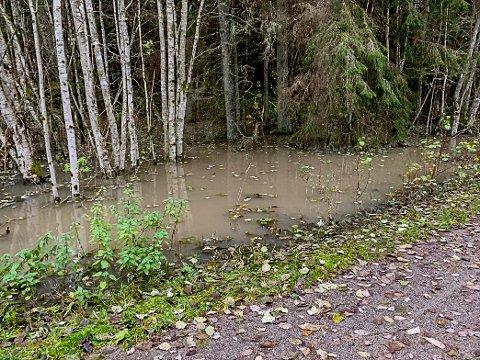 Vann har blitt demmet opp på ene siden av Linna i Askim.