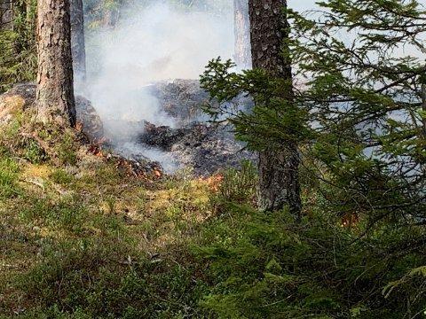 Brannvesenet har kontroll på flammene i Marker.