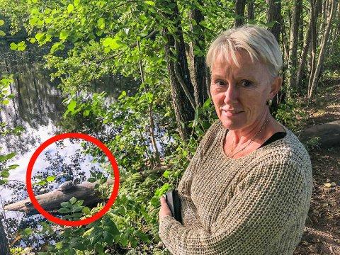 BEKYMRET: Mette Magnussen har sett skilpadda på Eik flere ganger når hun har gått tur i området. Nå er hun svært bekymret for hva høstkulden etter hvert kan gjøre med den, og oppfordrer eventuelle eiere til å melde seg – og redde dyret. Skilpadda kan skimtes på stammen nede til venstre.