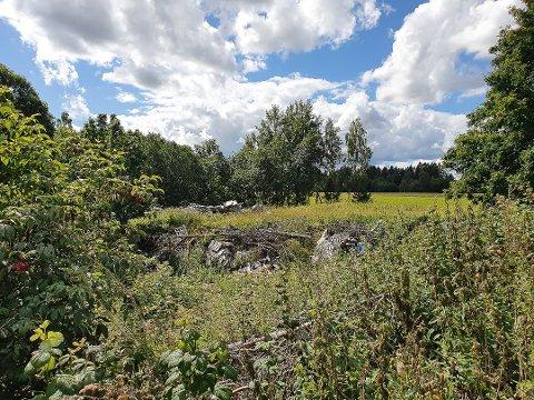 FORSØPLING: På bakgrunn av et tips, foretok Statens naturvern en befaring ved Sletner naturreservat. Her ble det avdekket forsøpling av nyere og eldre art.
