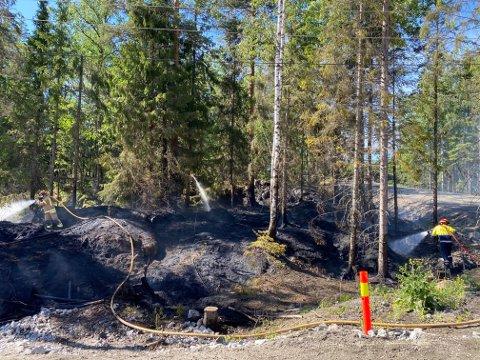 Politiet fikk raskt kontroll over brannen i skogholtet på Elvestad