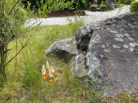 DUGGVÅT ØL: En hyggelig sommergave ventet naboer i Ringvoll.