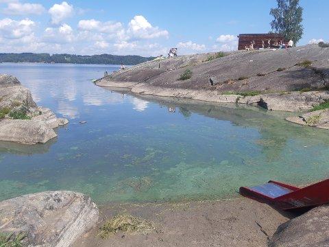 ALGER: Det er blågrønnalger i vannet ved Mørkfoss.