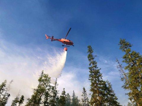 Brann: Skogbrannen ved Leirsjøen i juli 2020 var en av årets større utfordringer for brannmannskapene i Snåsa og Brannvesenet Midt IKS.