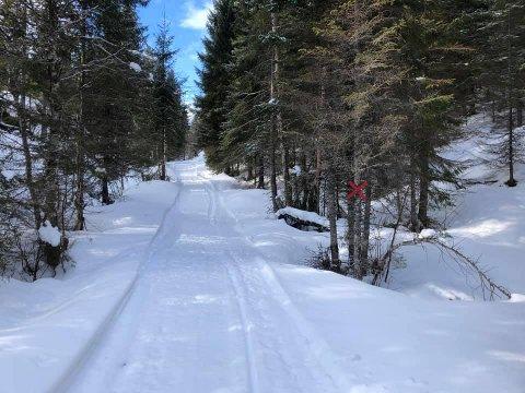 Åpen: Fredag ettermiddag ble nordsideløypa den første rekreasjonsløypa til å åpne i Snåsa denne sesongen.