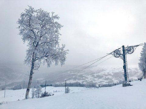 OPE: Frå trekket i Hodlekve torsdag 10. januar. Trekket vil vera ope i dagene framover. (Foto: Kim Andre Navarsete)