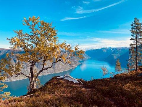 HAUST: Årdalsfjorden sett frå Søre Gråbrørne.