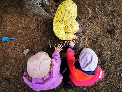 TAM: Røya Nam-nam er so tam at ungane kan klappa ho.