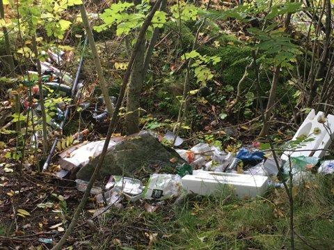 UTRIVELEG OG ULOVLEG: Ved Skjer i Leikanger er det nyleg dumpa eit stort tal flasker og ymse anna skrot på ein stad der slikt ikkje høyrer heime.