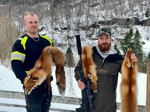 SVOGERDUELL: Jakob Hopperstad og Mats Sæterlid har lagt bak seg eit lite kappløp i revejakta denne vinteren.