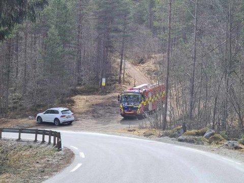 UTRYKNING: Fotoet er teke frå flyplassvegen og inn mot Kaupangerholten.