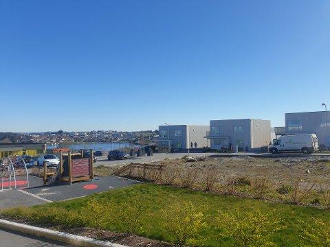 En flott onsdagsformiddag på Jåsund. Solen vil ikke forsvinne de neste dagene, men det blir kaldere i luften.