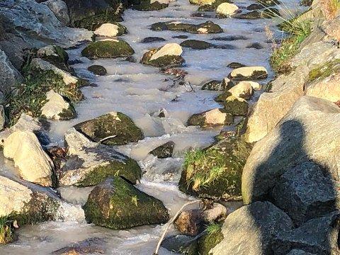 GRÅ BEKK: Sist uke var bekken som renner gjennom skoleområdet på Jørpeland farget grå på grunn av gravearbeid. Økt tilslamming av bekker kan gå ut over sjøaurebestanden.