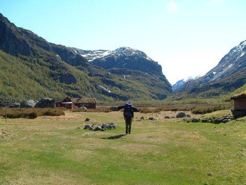 Miljødirektoratet går inn for å etablera nasjonalpark i Viglesdalen. Det same vil direktoratet gjera med to andre område som ligg heilt eller delvis i Hjelmeland.