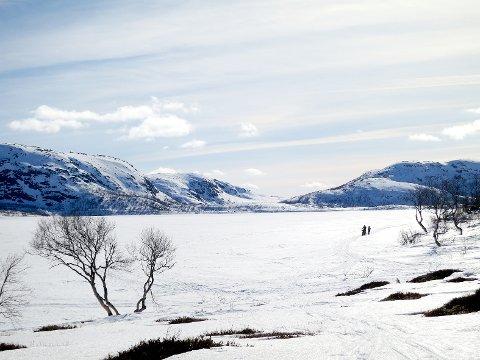 Skispora går på kryss og tvers over Sandvatnet på vinteren. – Lyngsheia blir sterkt redusert som utfartsområde om isen på Sandvatnet er utrygg, meiner Norsk Folkehjelp. (Arkivbilde)