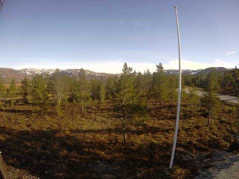 Lyngsheia fredag: Webkameraet til Norsk Folkehjelp Strand og Forsand viser at det lille som var av snø nå er smeltet bort.
