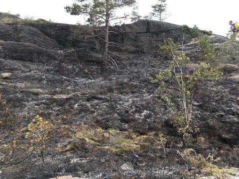 LYNNEDSLAG: Lokale helter var raske med å slukke brannen som lynet startet på Ombo søndag morgen. (Foto: Einar Tufte)