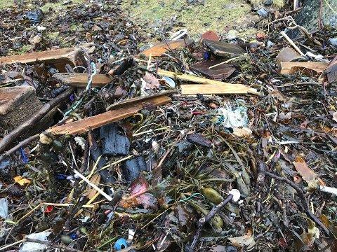 MER PLAST: Høy vannstand og vind har i vinter ført plastfiber og annet forurensende avfall opp på strendene i Ryfylke. Her fra Lindøy, der oppsynsmann Jørn Bikset i Ryfylke Friluftsråd har tatt bilde av avfallet.