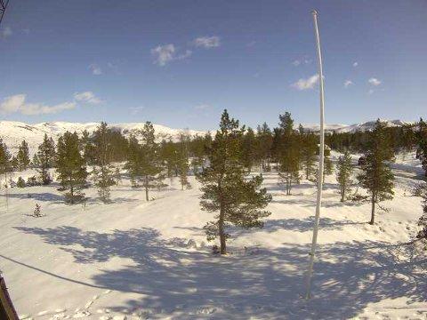 LYNGSHEIA: Fredag var det fint i Lyngsheia. Fra Norsk Folkehjelp sitt webkamera.