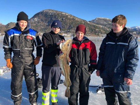 TORSK PÅ NI KILO: Mikkel Rygh (frå venstre), Tommy Veland Idsø, Filip Erland og Joakim Melberg er på isen i Jørpelandsvågen seks-sju timar kvar dag. Laurdag fekk dei storfangst.