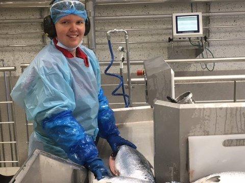 JOBBER MED FISK: Anita Strøm sorterer og sløyer fisk, veier, pakker og sender fisk av gårde med trailere for Mowi på Hjelmeland.