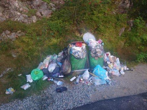 MANGE KLAGER: Både dei lokale og turistane klagar når det ser slik ut på rasteplassen over Lysebotn.