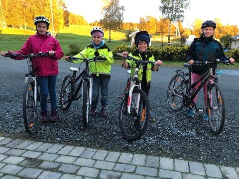 Ingrid Stokke Folstad, Sigrid Stokke, Martin Stokke og Ida Mathilde Stokke syklet rundt med tombola og premier på bagasjebrettet.