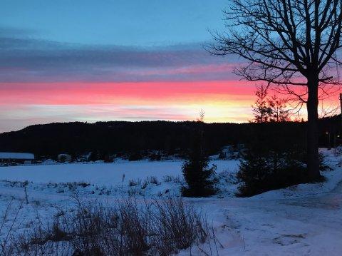 Dette bildet tok Gunn Kari Krohn-Hansen på en av sine vinterturer til beins på Ebbestad.