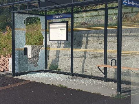 Busskuret på holdeplassen Lindeveien har fått gjennomgå i helga.