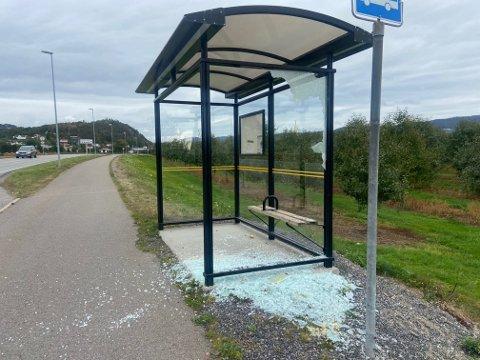 Slik så busskuret på Skjønheim ut, mandag morgen.