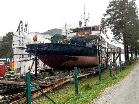 Øst-Telemarkens Brukseierforening hevet vannstanden i Tinnsjøen for Norsk Industriarbeidermuseum slik at NIA fikk Ammonia på slipp. Bidro til flomkatastrofen.