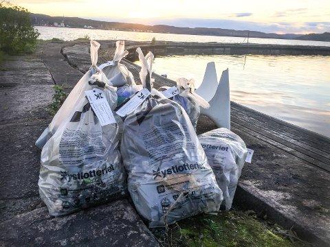 OPPRYDDING: Telemark har flere forsøplede områder, viser en strandrydderapport. Det ble dog ryddet opp flere steder i fjor, som på denne stranden på Herøya, Porsgrunn.